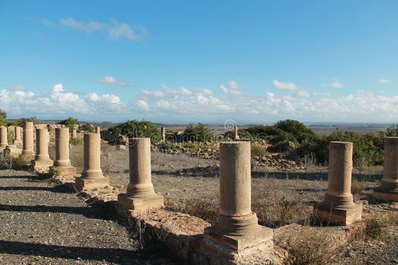Ruinen von Lixus lizenzfreie stockfotos