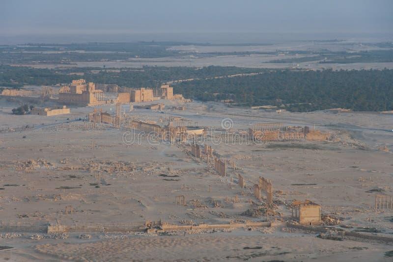 Ruinen von Palmira lizenzfreies stockfoto