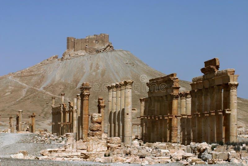Ruinen von Palmyra lizenzfreie stockfotografie