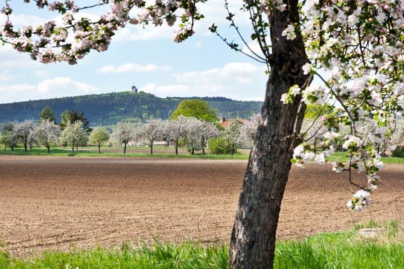 Ruinen von Radyne ziehen sich nahe Landschaft Pilsens im Frühjahr, Tschechische Republik zurück lizenzfreies stockbild