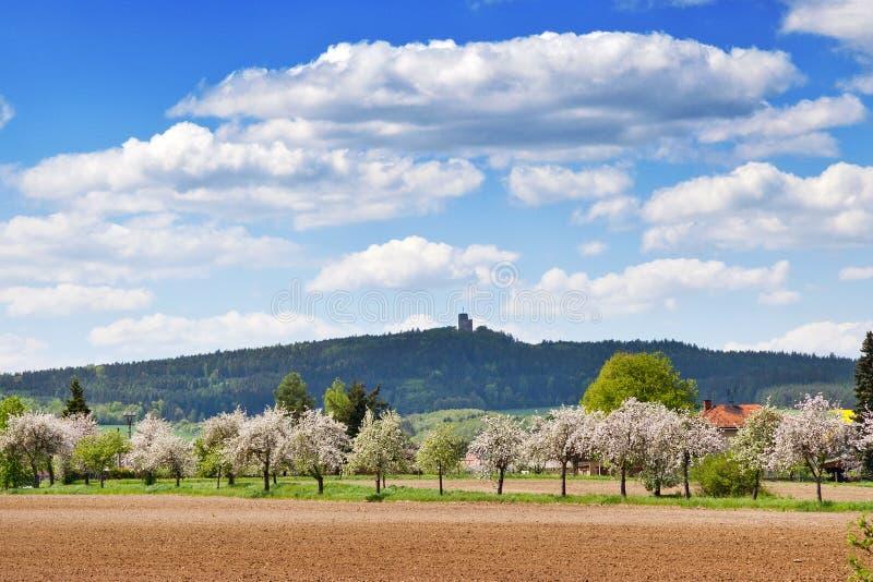 Ruinen von Radyne ziehen sich nahe Landschaft Pilsens im Frühjahr, Tschechische Republik zurück stockfotos