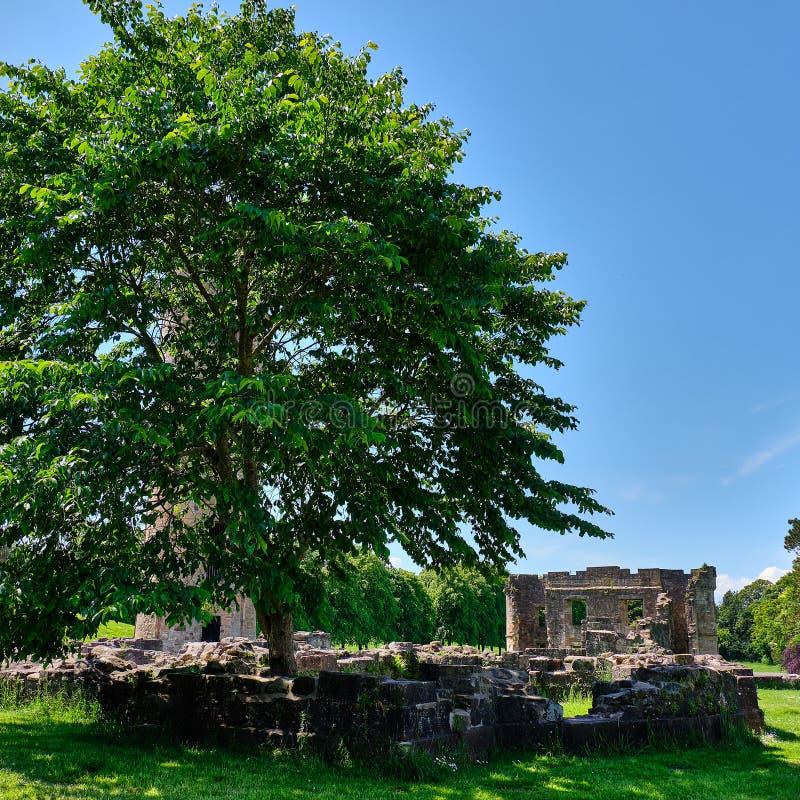 Ruines écossaises antiques et les murs d'annexe chez Eglinton dedans photographie stock libre de droits