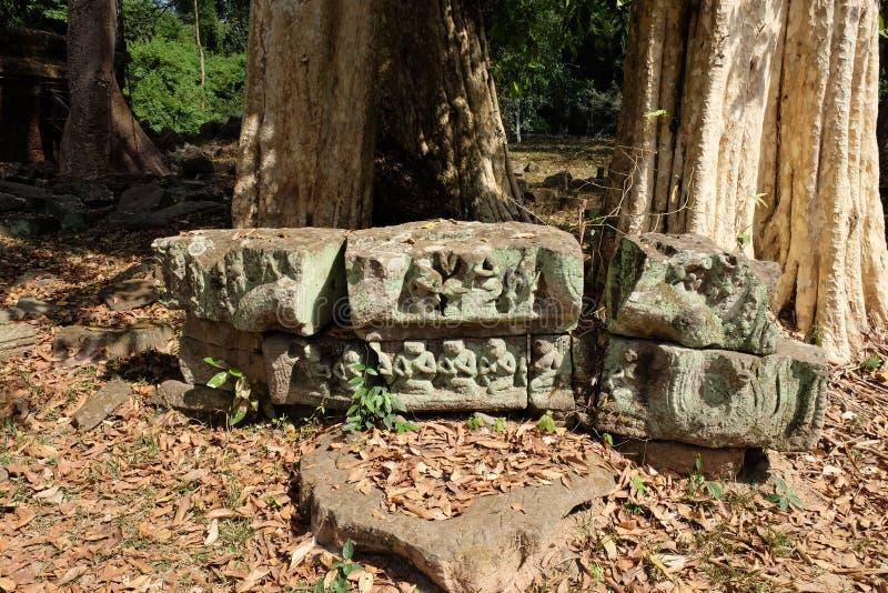 Ruines antiques dans la forêt les restes des bâtiments abandonnés dans la jungle photo stock
