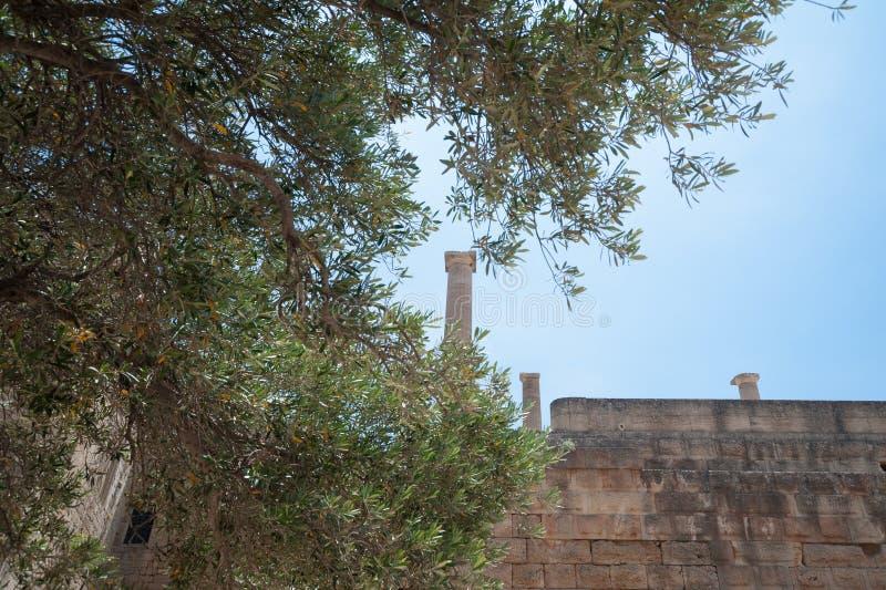 Ruines antiques de clifftop Restes d'un temple dorique d'Athena Lindia, datant environ de 300 AVANT JÉSUS CHRIST image libre de droits