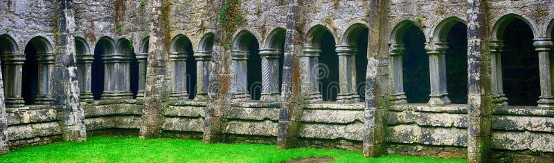 Ruines d'abbaye, Quin, Irlande photos libres de droits
