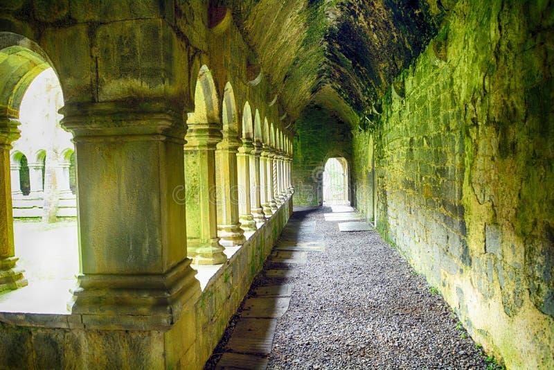 Ruines d'abbaye, Quin, Irlande image stock