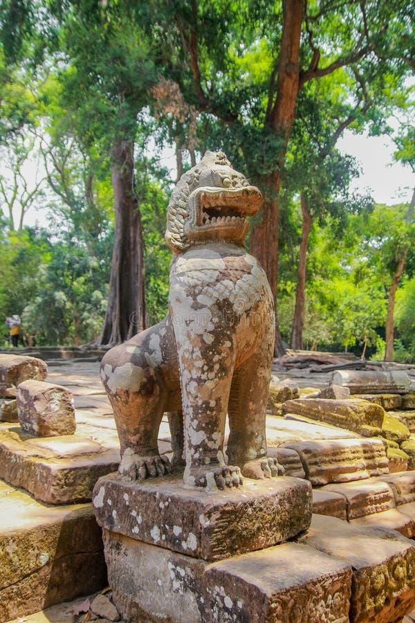 Ruines d'Angkor Vat dans la jungle photos libres de droits