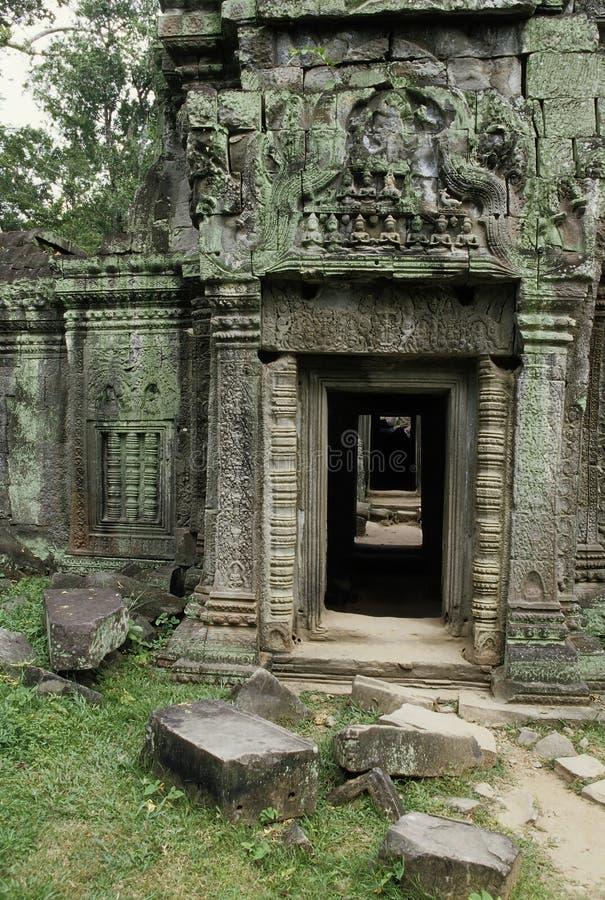 Ruines d'Angkor Wat de temple de Ta Prohm, Cambodge image libre de droits