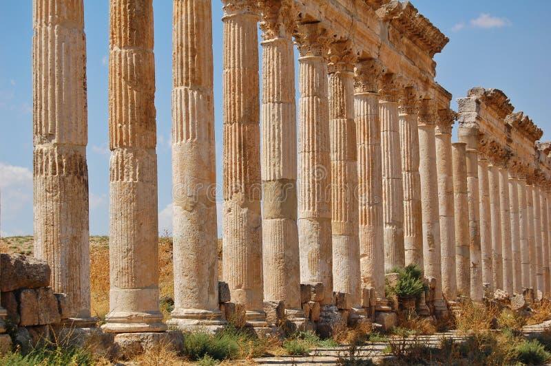 Ruines d'Aphamia, Syrie photos libres de droits