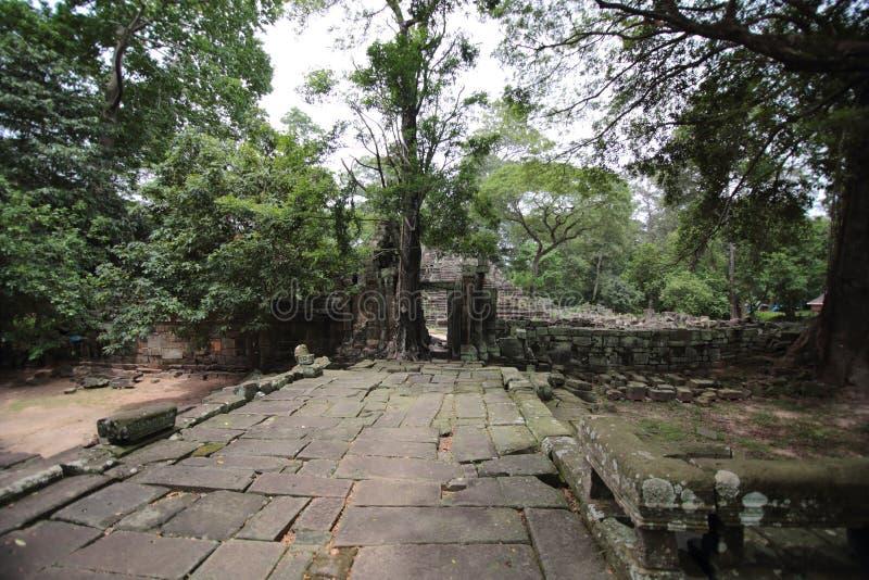 Ruines dans Angkor images libres de droits
