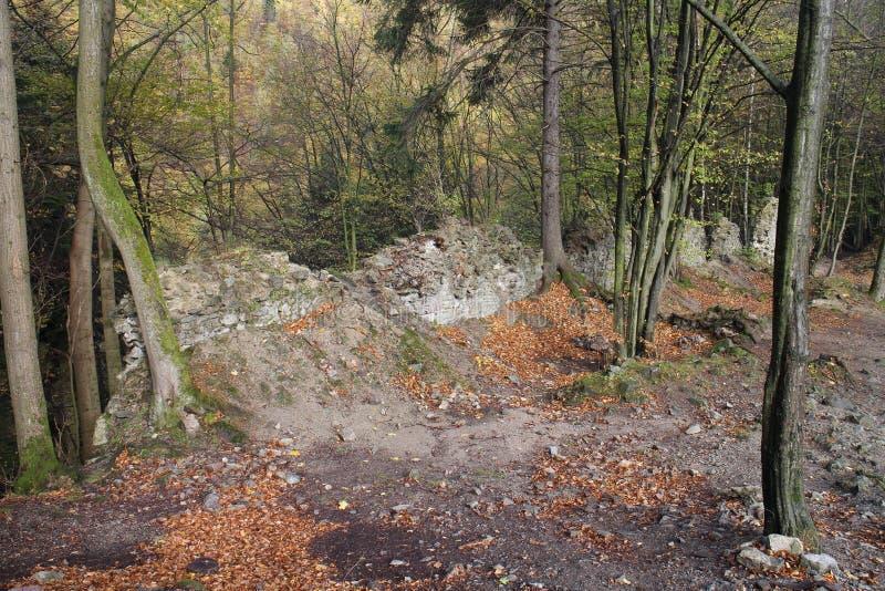 Ruines de château de Starhrad dans la région d'ilina de ½ de Å photo libre de droits