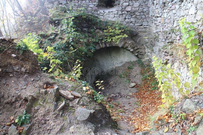Ruines de château de Starhrad dans la région d'ilina de ½ de Å photos stock