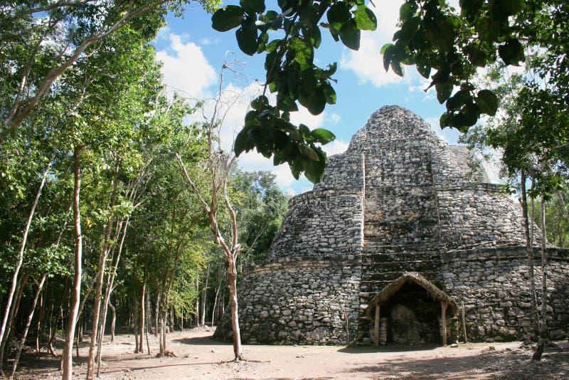 Ruines de Chichen Itza photo libre de droits