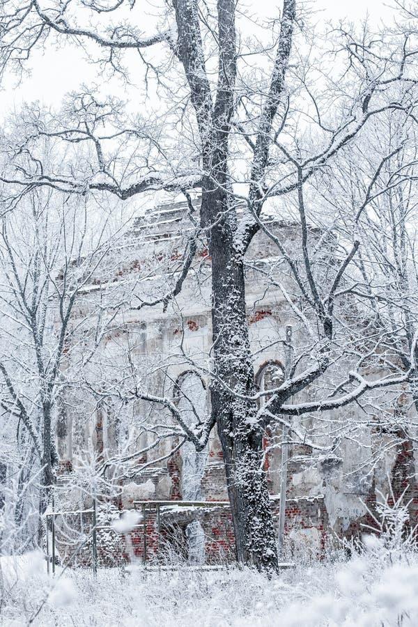Download Ruines De La Vieille église Dans Un Jour D'hiver Photo stock - Image du janvier, stationnement: 87708002