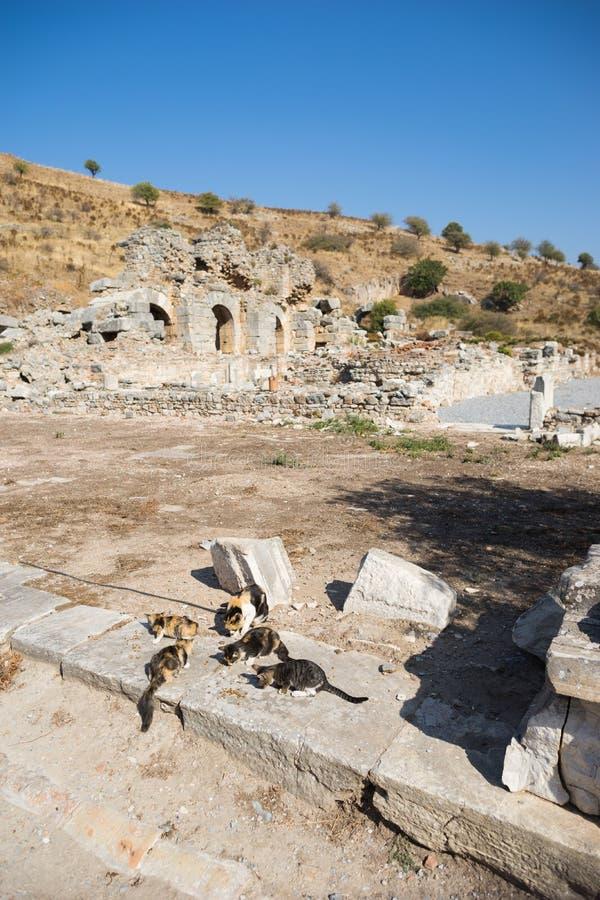 Ruines de la ville grecque Ephesus image stock