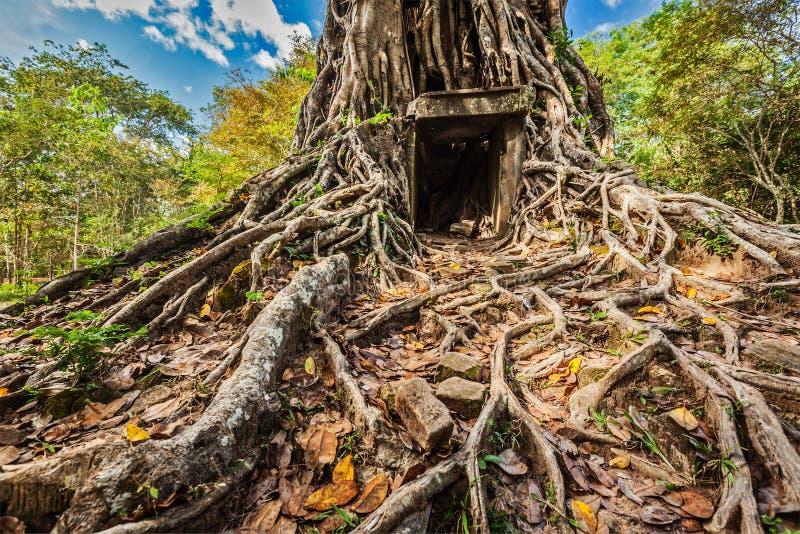 Ruines de temple de Sambor Prei Kuk, Cambodge image libre de droits