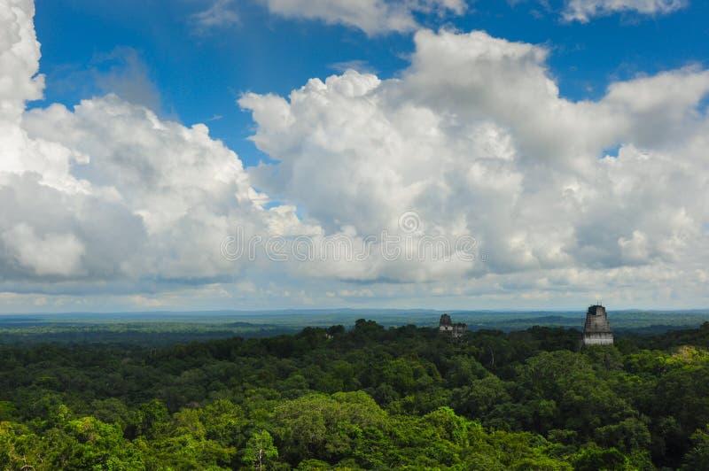 Ruines de Tikal au-dessus de la forêt, Guatemala photo stock