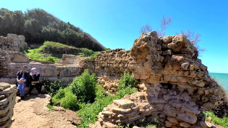 Ruines de Tipasa (Tipaza) La ville antic était un colonia dans les remplaçants romains de la Mauritanie Caesariensis de province banque de vidéos