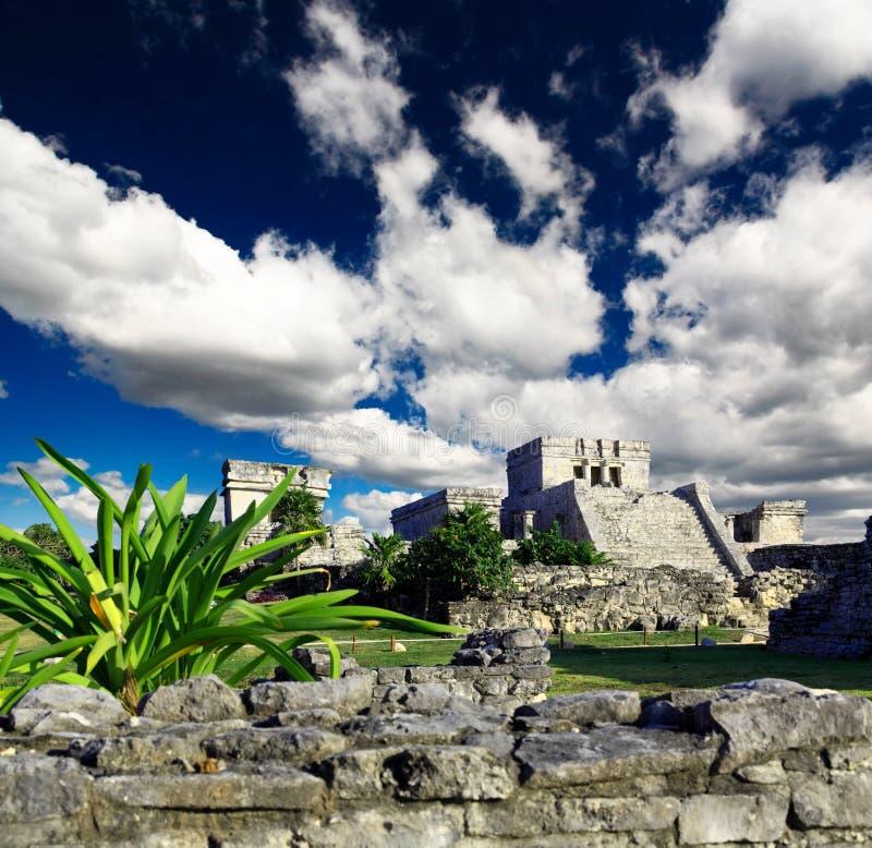 Ruines de Tulum dans le monde de Maya près de Cancun photo stock