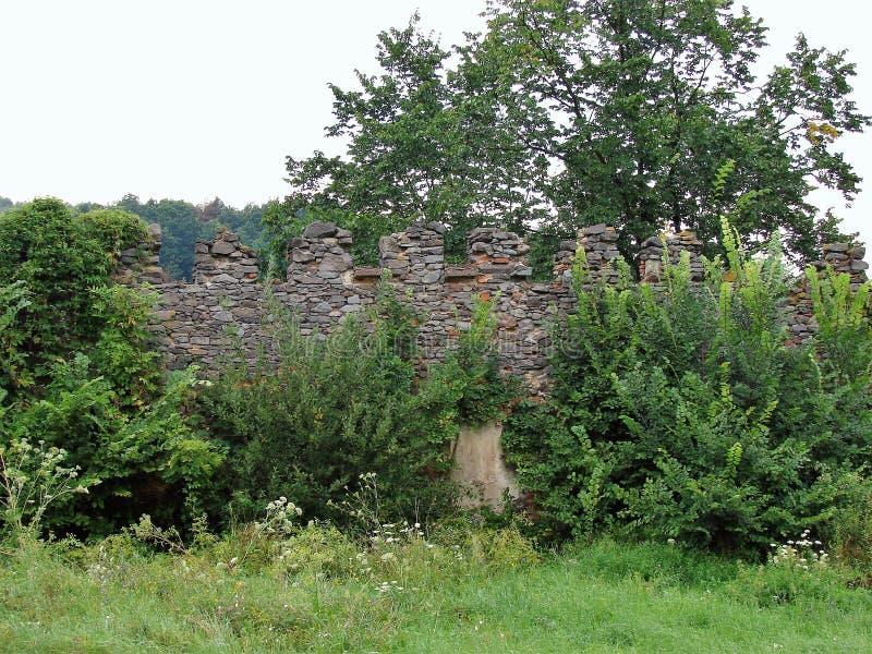 Ruines de Viglas, Slovaquie photos libres de droits