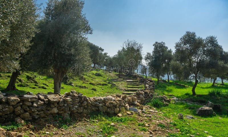 Ruines de ville antique d'Euromos et escaliers de Milas, Aydin, Turquie Manière du sud de nécropole Règlement grec et romain image stock