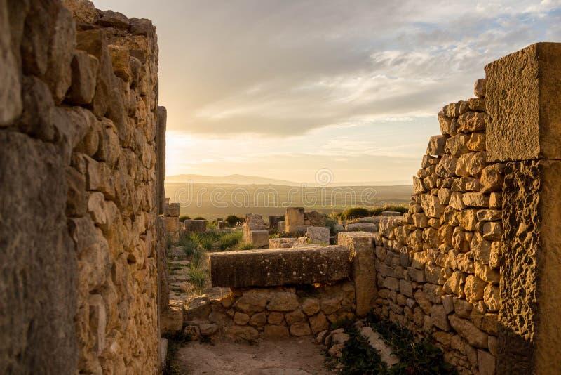 Ruines de Volubilis au coucher du soleil photo libre de droits