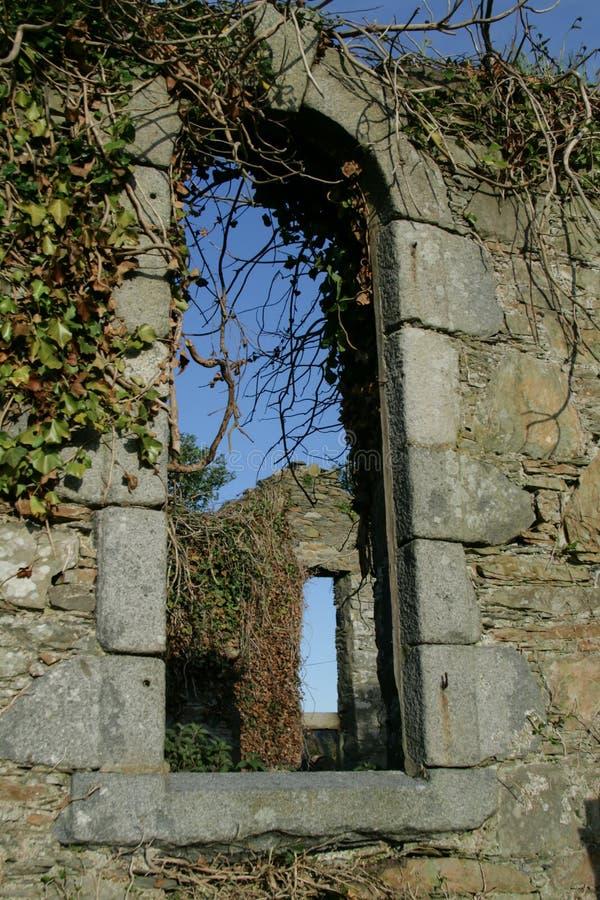 Ruines envahies de fenêtre d'église en Ecosse photos stock