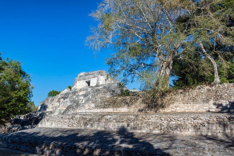 Ruines et arbres de Becan images libres de droits