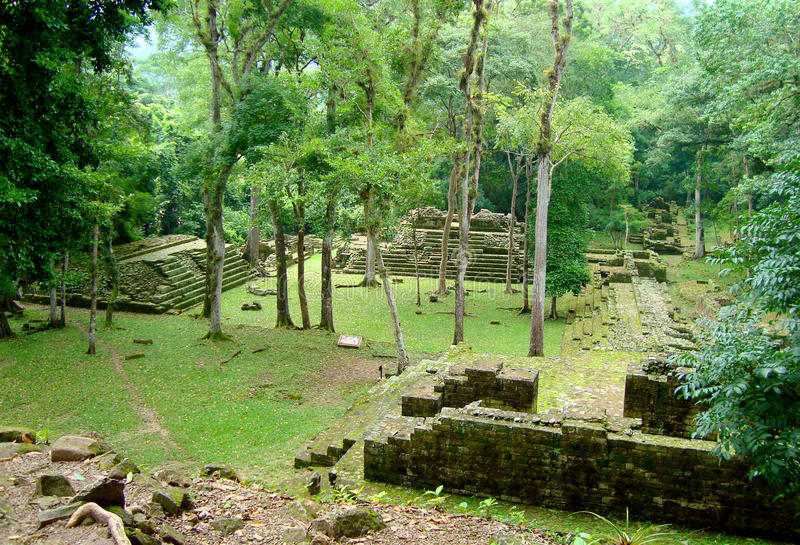 Ruines maya antiques de temple au Honduras photo libre de droits