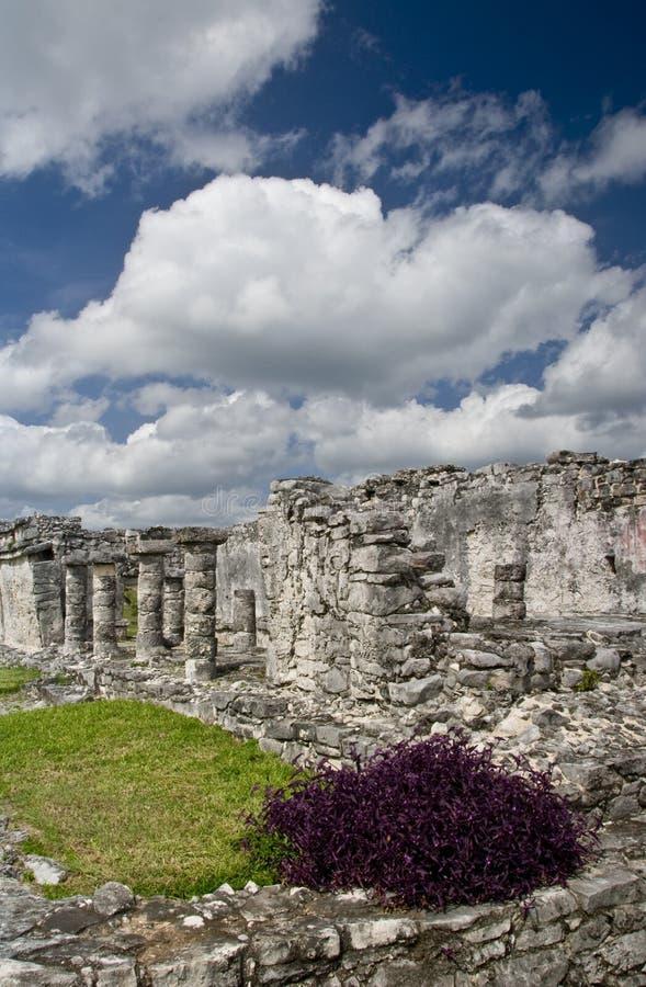 Ruines maya chez Tulum Mexique images libres de droits
