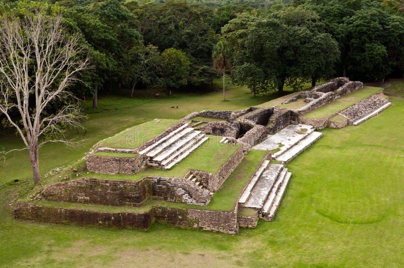 Ruines maya d'Altun ha photos libres de droits