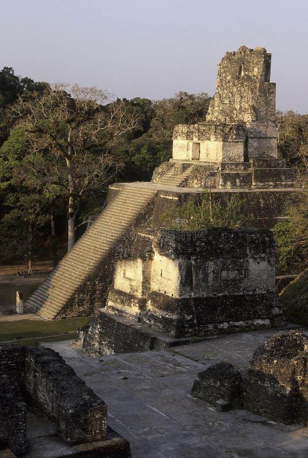 Ruines maya Tikal, Guatemala photos libres de droits