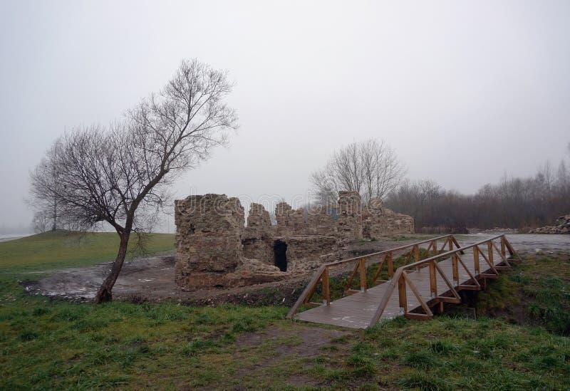 Ruines près de l'étang photo libre de droits