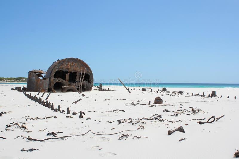 Ruinieren Sie Kakapo am Strand von kommetjie stockbilder