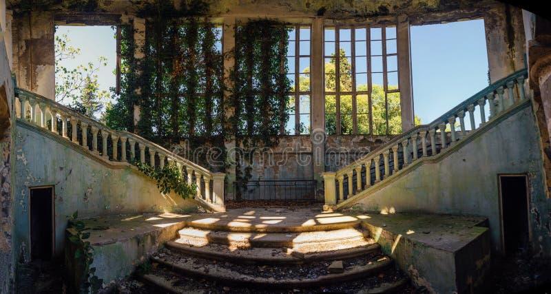 Ruinierter Villeninnenraum überwältigt durch die Anlagen überwältigt durch Efeufenster und altes Treppenhaus lizenzfreies stockbild