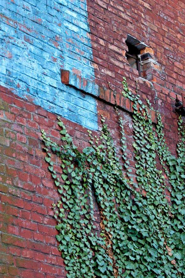 Download Ruins stock image. Image of brickwork, cement, aged, assan - 16501751