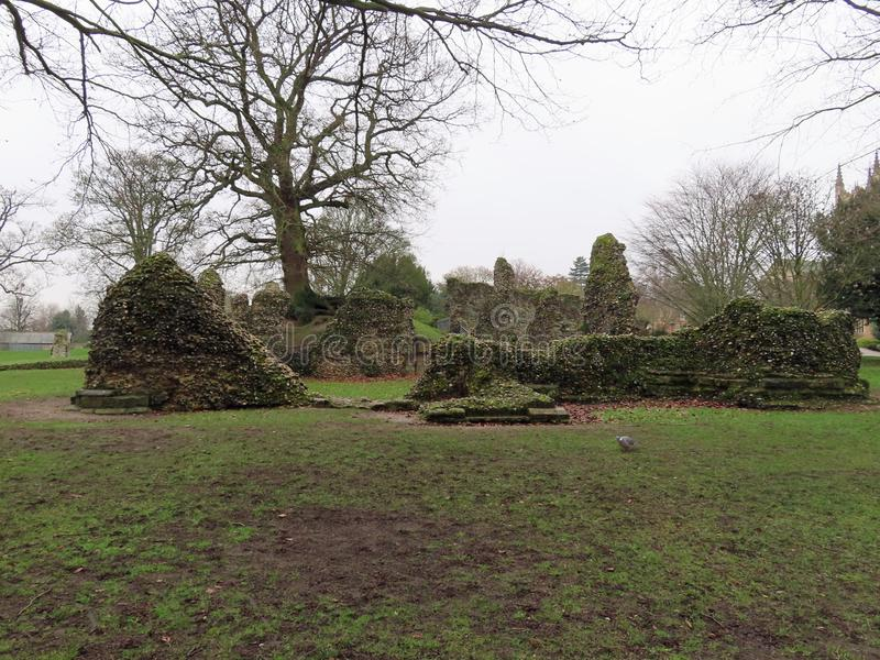 Ruins in the Abbey Gardens. Ruins of the Abbey of St Edmund stock photos