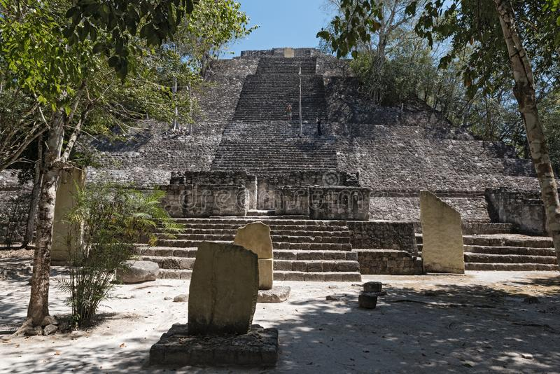 The ruins of the ancient Mayan city of calakmul, campeche, Mexico.  royalty free stock photo