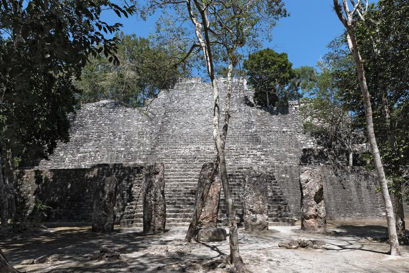 The ruins of the ancient mayan city of calakmul, campeche, mexico.  stock photo