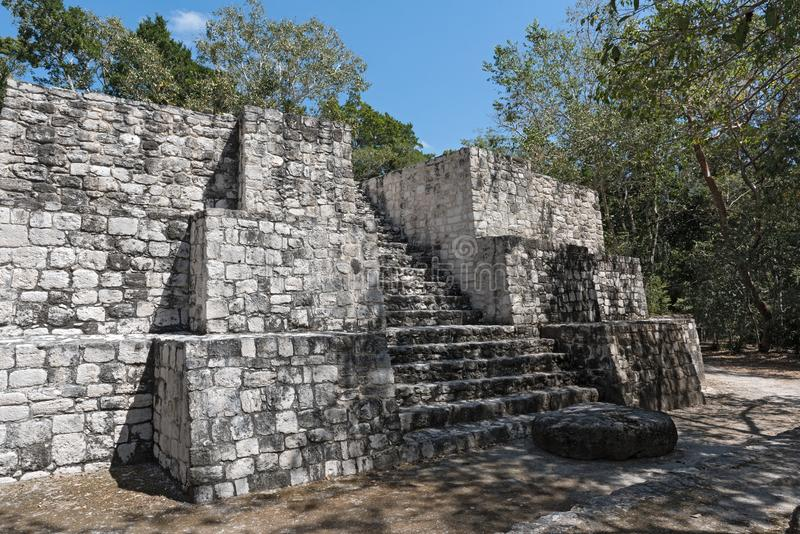 The ruins of the ancient Mayan city of calakmul, campeche, Mexico.  stock photos