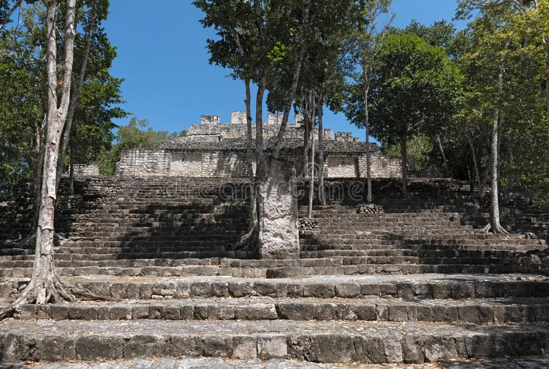 The ruins of the ancient Mayan city of calakmul, campeche, Mexico.  stock photography