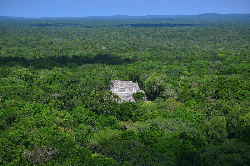 Ruins of the ancient Mayan city of Calakmul stock image