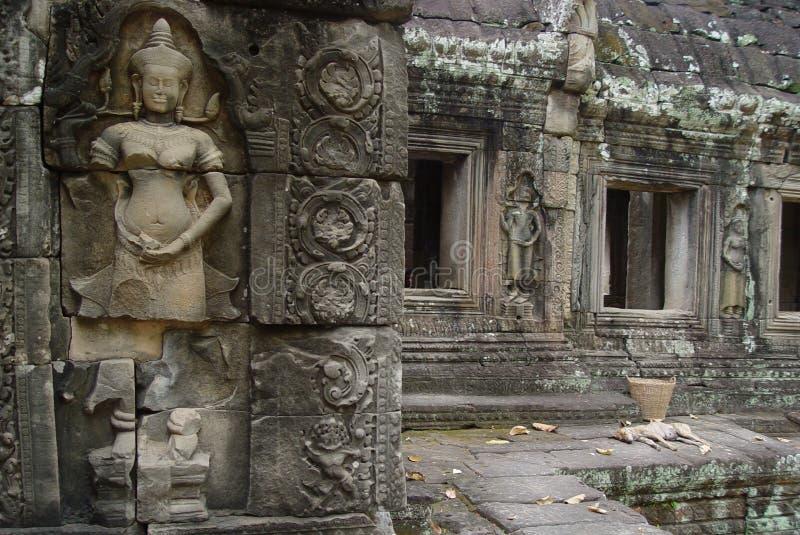 Ruins Angor Wat royalty free stock images