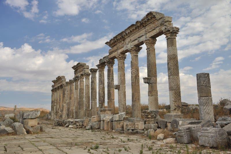 Ruins Of Apamea Stock Photo