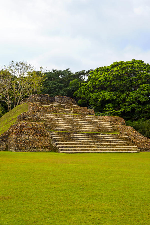 Ruins in Belize royalty free stock images