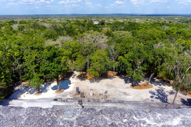 Ruins of Calakmul in Campeche, Mexico royalty free stock photography