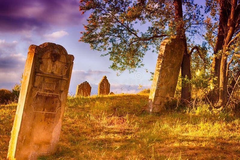 Download Graveyard stock photo. Image of tasmania, scary, tomb - 30212462