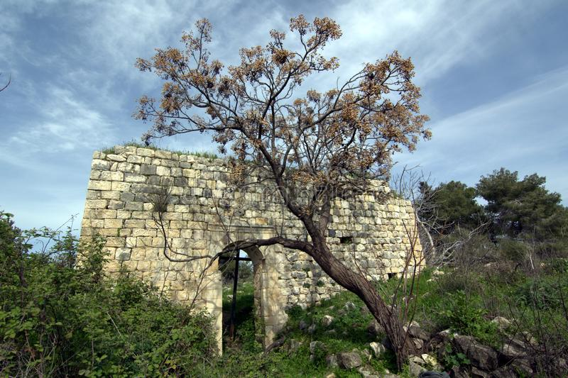 Ruins of the Christian church among flowering trees in the Golan Heights in spring in Israel royalty free stock photo