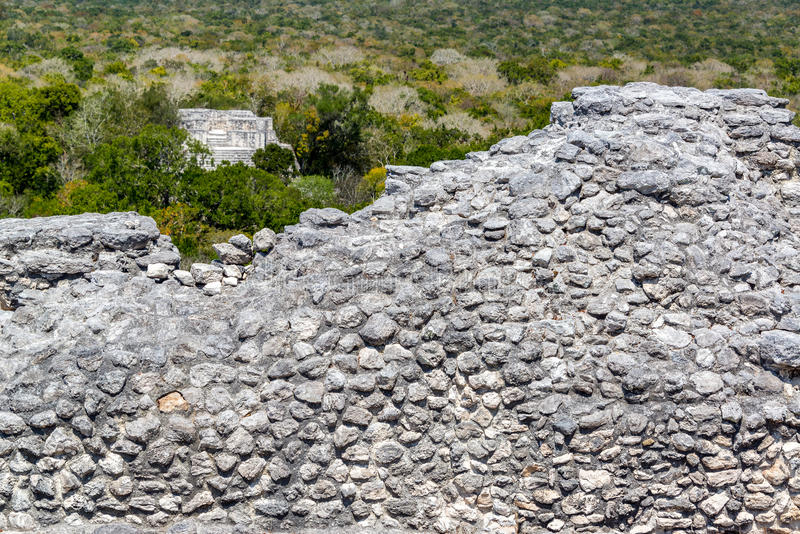Ruins and Jungle in Calakmul royalty free stock photo