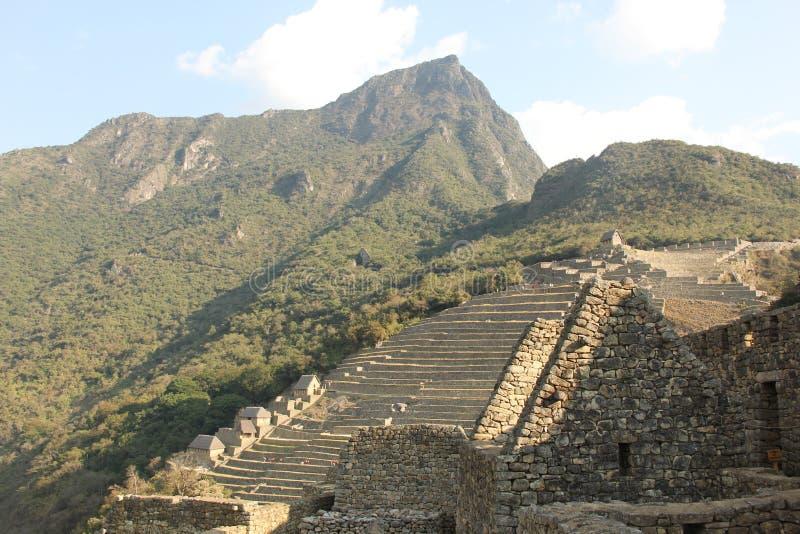 The ruins of Machu Picchu royalty free stock photo